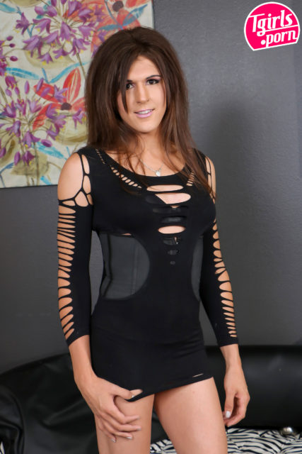 Bailey Love XXXBios - Tgirls porn Bailey Love in sexy black dress - TS Bailey Love porn pics