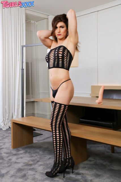 Bailey Love XXXBios - TS Bailey Love in sexy black fishnet stockings and lingerie - TGirlsXXX Bailey Love porn pics