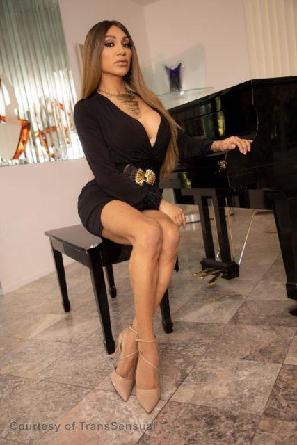 Top TS pornstars XXXBios - TS porn star Jessy Dubai pics